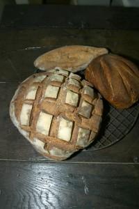 Miche de campagne, pain complet moulé et navette